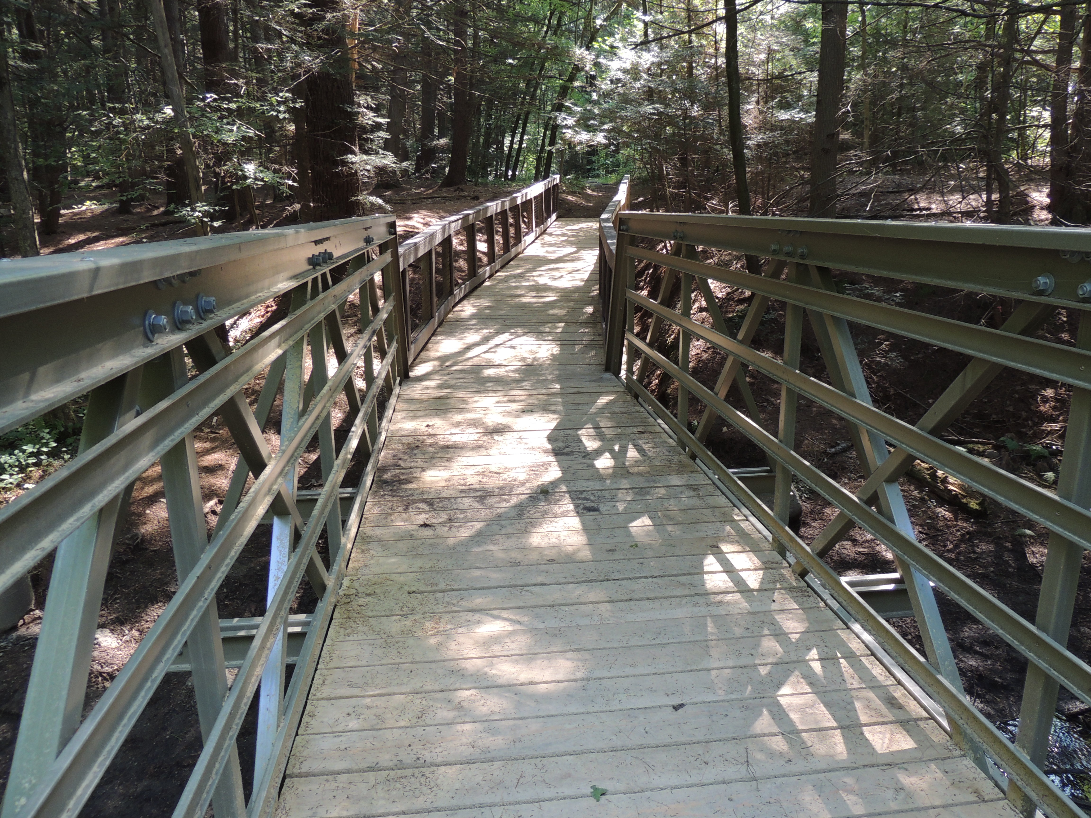 Fitzgerald Lake Bridge And Boardwalk