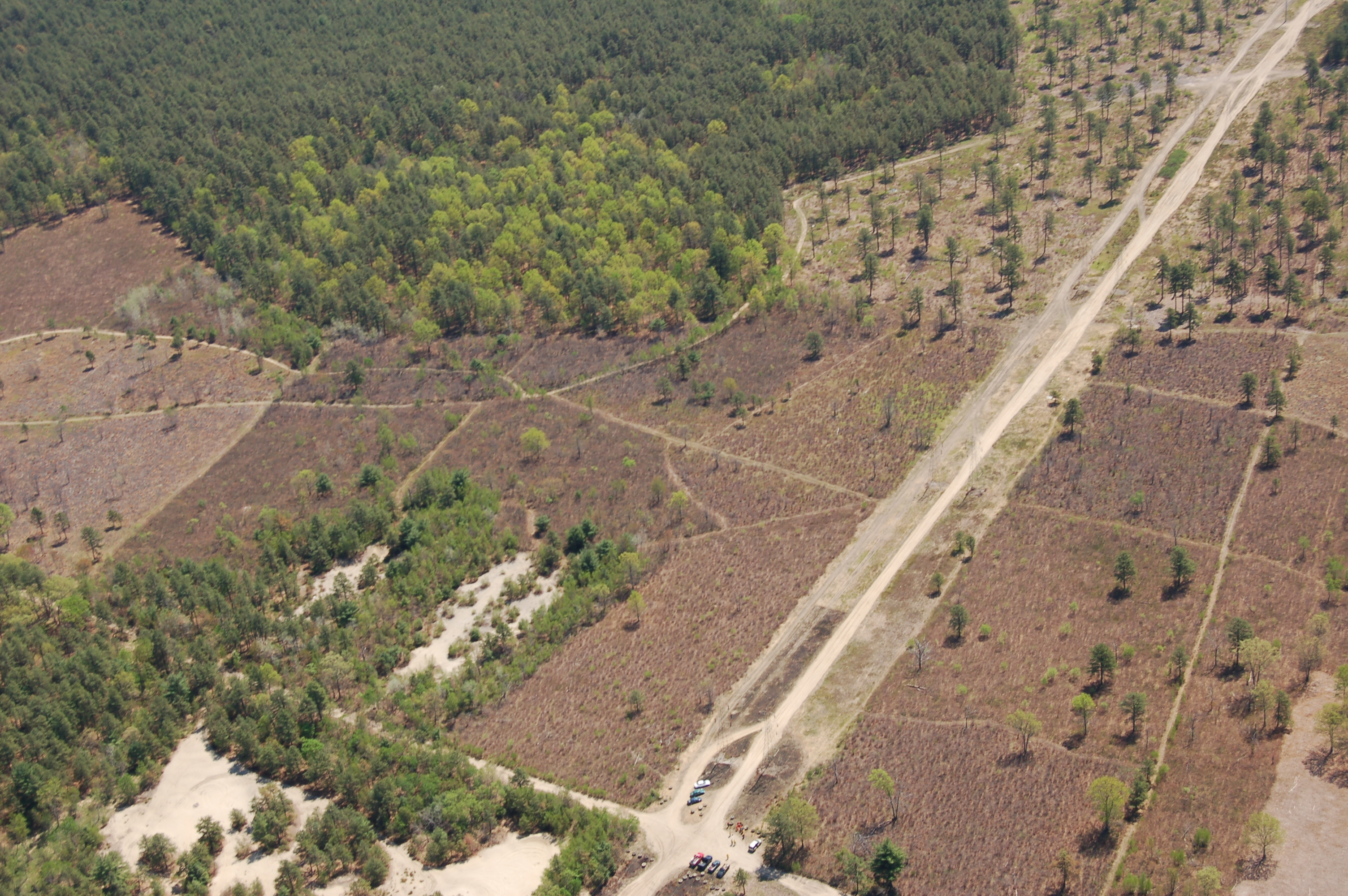 Montague Plains